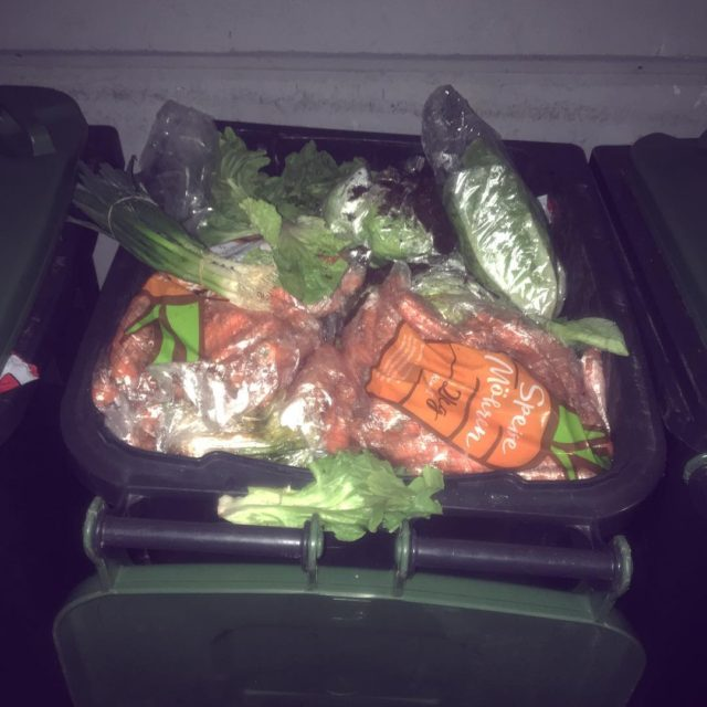 A dumpster with many carrotsand some other veggies! The dumpstershellip
