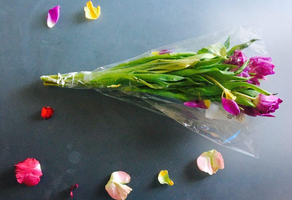 Tulpen aus dem Container