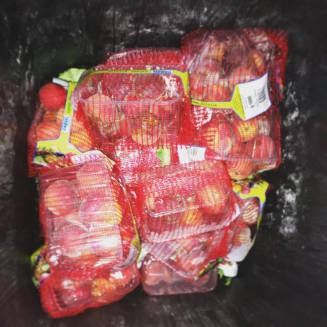 lebensmittelverschwendung lebensmittel lebensmittelretten dumpstern dumpsterdiving dumpdiving containern essensverschwendung essen nahrunghellip